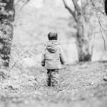 Fotografischer Jahresrückblick 2015